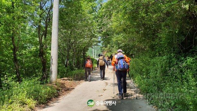 승우여행사, 경북 영주시와 '영주 우에로' 오픈 기념 첫 산행 안전하게 마무리