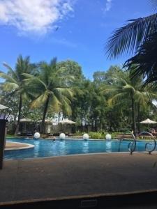 필리핀 세부 래디슨블루 호텔 수영장